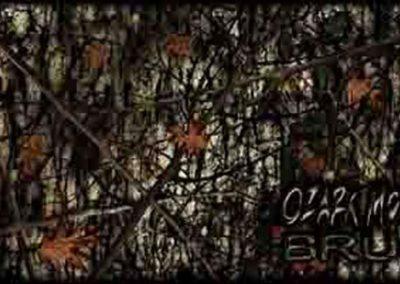 ozark-mountian-brush-800x403